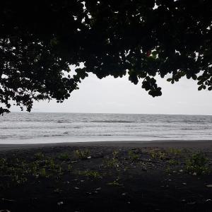 Hotel Pictures: Etisah Beach Hotel, Limbe