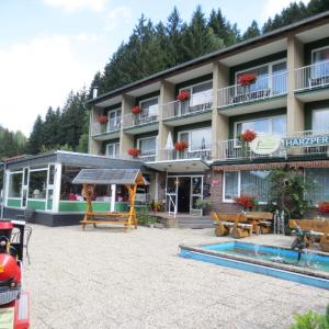 Hotelbilleder: Pension Harzperle, Wildemann
