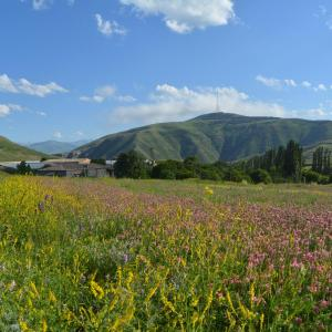 Foto Hotel: Azoyan Holiday Resort, Sisian