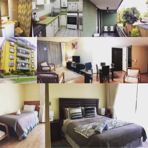 Hotelbilleder: Apart Simon, Temuco