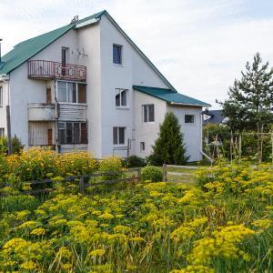 Hotel Pictures: Agrousadba Meyana Farmhouse, Gaishcha