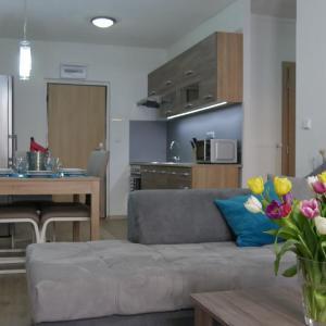 Hotel Pictures: Všemina Apartman, Lužkovice