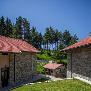Hotel Pictures: Holiday Homes Rodopski Uyut, Dospat