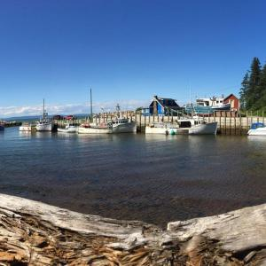 Hotel Pictures: Quirky Beach Cottage, Harbourville
