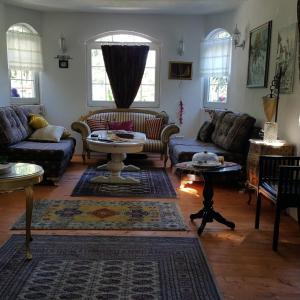Hotelfoto's: Villa Selma, Rakovica