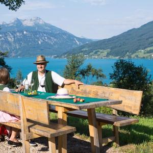 Fotos del hotel: Ferienwohnung Angermann, Steinbach am Attersee