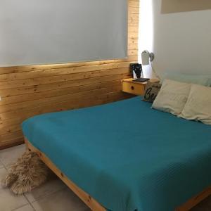 Foto Hotel: Dormy Houses Payen, Las Lenas