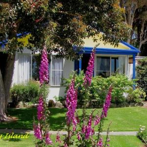 Hotel Pictures: King Island Accommodation Cottages, Naracoopa