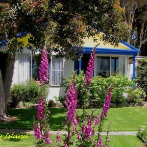 Zdjęcia hotelu: King Island Accommodation Cottages, Naracoopa