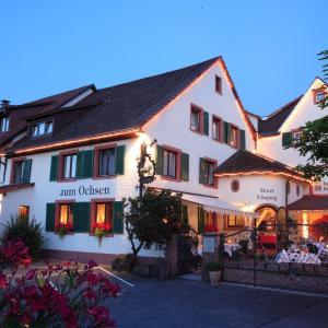 Hotelbilleder: Hotel Ochsen, Binzen