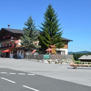 酒店图片: Gasthof Alte Tanne, 霍夫北萨尔茨堡