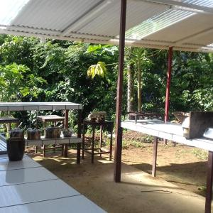 Hotel Pictures: Bolita Rainforest Hostel and Cabinas, Dos Brazos
