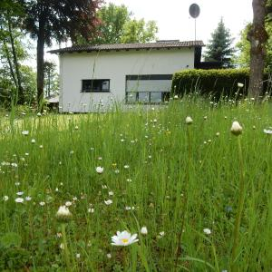 Hotel Pictures: Haus am Wald, Lissendorf