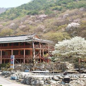 Zdjęcia hotelu: Alps 119 Pension, Ulsan