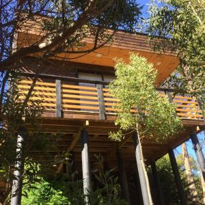Hotel Pictures: Cabaña Bosque, Pichilemu