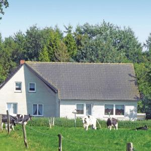Hotelbilleder: Holiday home Ihlow Mißgunster Weg, Ihlow