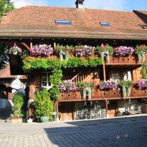 Hotel Pictures: B&B Liechti Blumen, Wattenwil