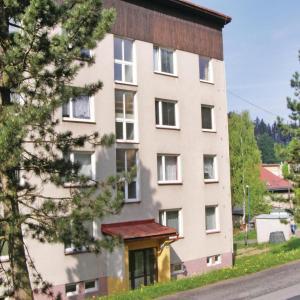 Hotel Pictures: Apartment Smrzovka XII, Smržovka