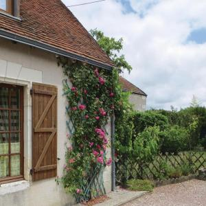 Hotel Pictures: Holiday Home Pontlevoy Rue Le Boule D'Or, Pontlevoy