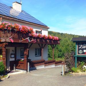 Hotel Pictures: Ferienhotel Zwotatal, Zwota