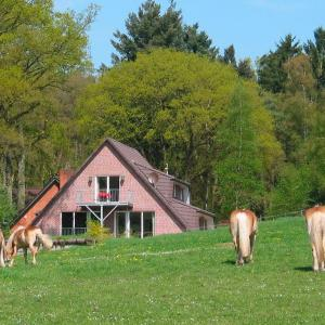 Hotel Pictures: Haus Niedersachsen FeWo 9 - [#29465], Worpswede
