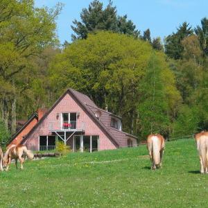 Hotel Pictures: Haus Niedersachsen FeWo 7 - [#29463], Worpswede