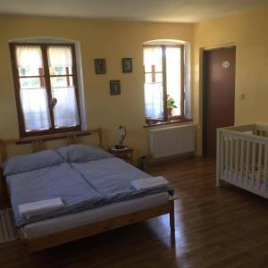 Hotel Pictures: Penzion u Marušky, Božanov