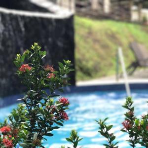 ホテル写真: Herradura house relaxing spot, Jacó