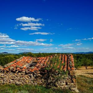 Hotel Pictures: Aras Rural, Aras de Olmos