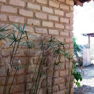 Hotel Pictures: Chale Kalabura, Cavalcante