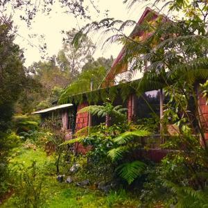 Фотографии отеля: Los Ulmos de Ralún Lodge, Ralún