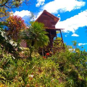 Hotel Pictures: Cabañas Río Yambala, Vilcabamba