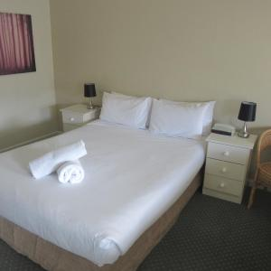 Zdjęcia hotelu: Abel Tasman Airport Motor Inn, Launceston