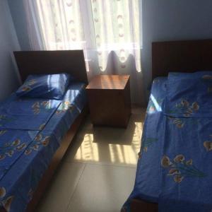 Φωτογραφίες: Guest House Novaya Volna, Grigoleti