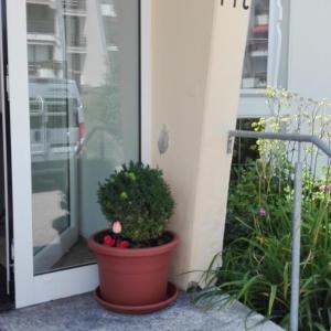 Hotel Pictures: Rosenalm Appartment 231, Scheidegg