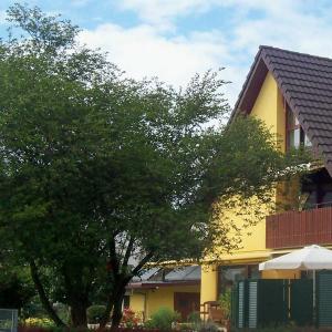 Hotelbilleder: Ferienwohnung Baumann, Ringsheim