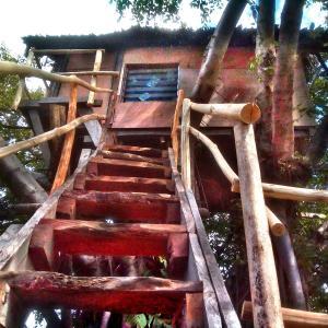 Fotografie hotelů: Volcano Eco Treehouse, Ikounap