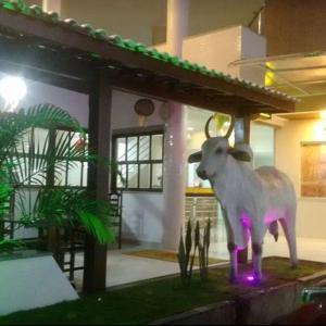 Hotel Pictures: Pousada Dede, Santo Antônio de Jesus