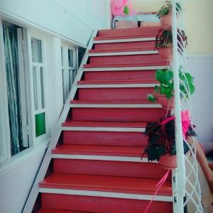 Hotelbilleder: House on Ashiq Cuma Street 8, Sheki