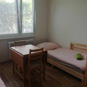 Hotel Pictures: Byt 1+kk, Hejnice, Hejnice