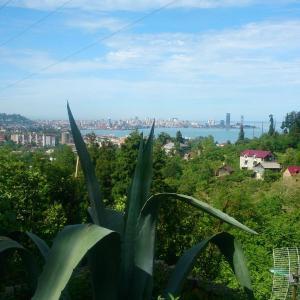 Hotellikuvia: Miranda Jghenti, Batumi