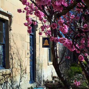 Hotel Pictures: Blue Bell Inn, Sorell