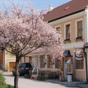 酒店图片: Gasthof zur Kirche, Kottes