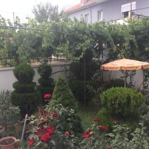 Hotellbilder: Vila Ridvani, Korçë