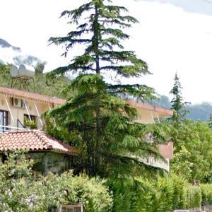 Zdjęcia hotelu: Edi's Hospitable House, Wlora