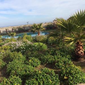 Фотографии отеля: Departamento Corbeta Serena Golf, Ла-Серена