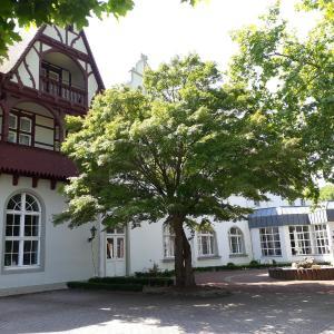 Hotel Pictures: Ringhotel Mutiger Ritter, Bad Kösen