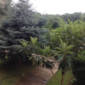 Hotellikuvia: Apartment 9 in Fantazia Complex, Hisarya