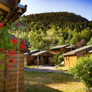 Hotel Pictures: camping du haut des bluches, La Bresse