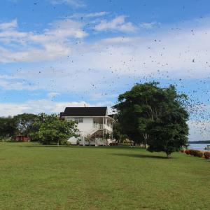 Fotos do Hotel: Baganara Island Resort, Poterima